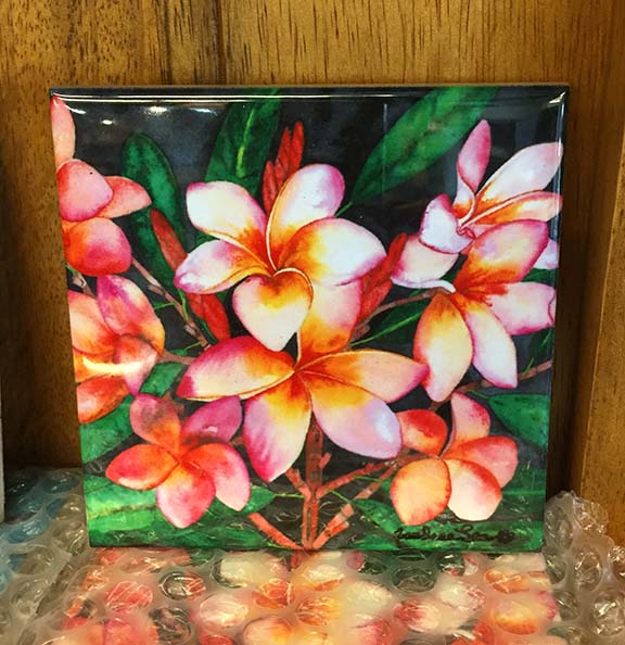 Tropical Ceramic Tiles