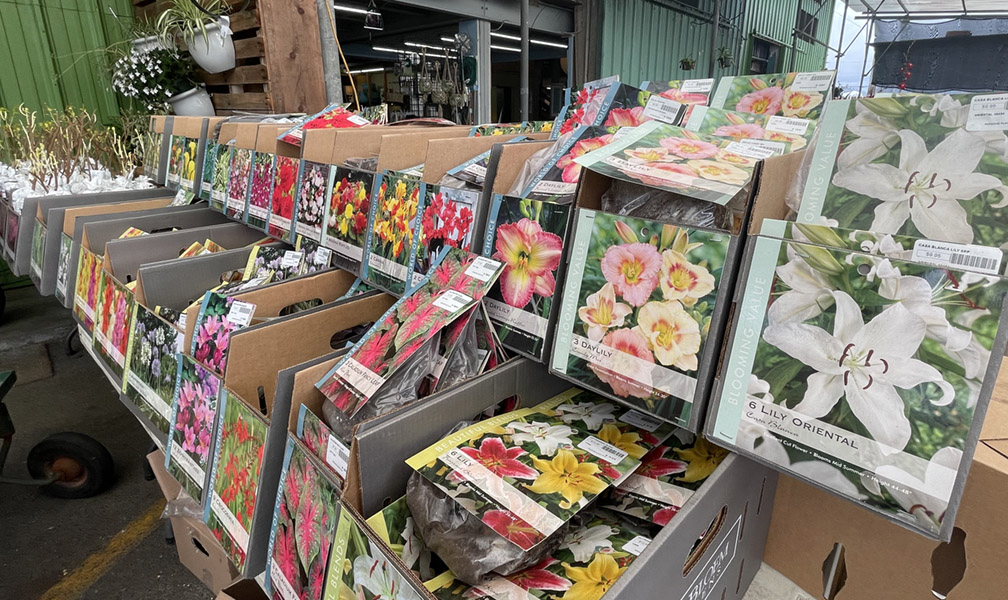 Flower, Berry and Vegetable Bulbs are Here!