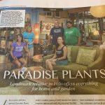 Paradise Plants article November 2019