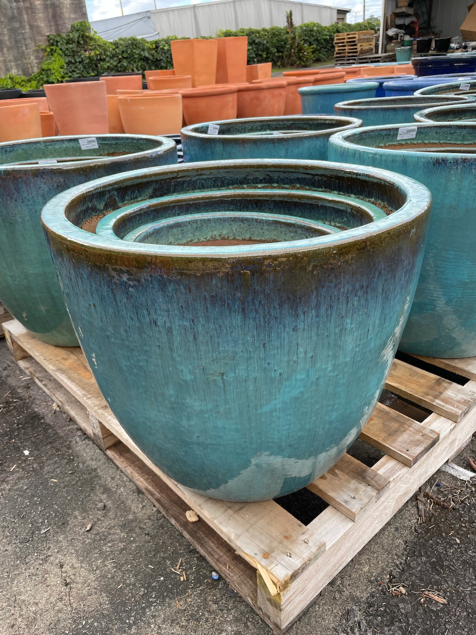 New Shipment of Pots are Here!